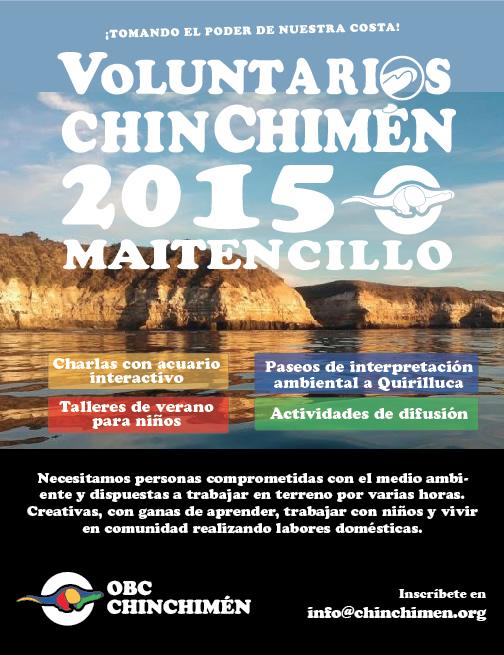 AficheVoluntarios2015-3